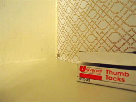 shelf paper alternative build design shelf liner diy pdf garden sheds woodworking