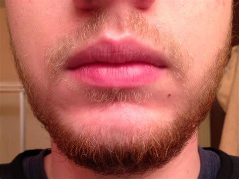 black phomthong reviews how to promote facial hair growth facialhairgrowthcream com