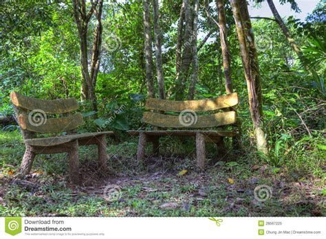 bench in forest 2 wooden benches in a forest royalty free stock photo