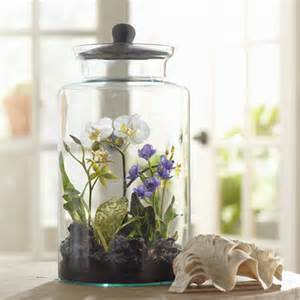 faux mixed orchid terrarium wayfair