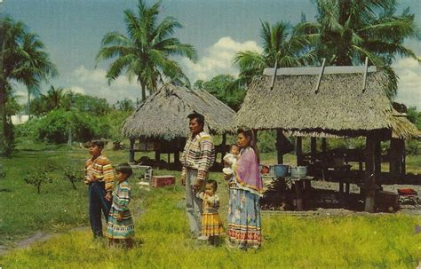 the seminole indians of florida genealogy trails happy vintage travel postcards florida indians