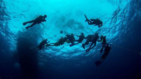 dive master padi dive master padi diving