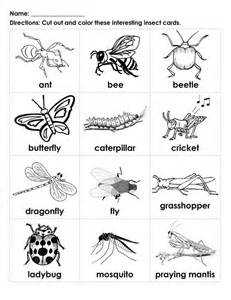 7 best images of kids bug and insects worksheets insect