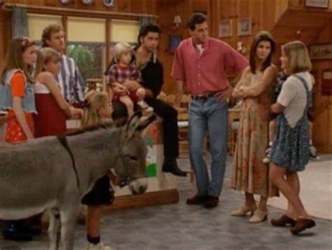 full house you pet it you bought it image full house you pet it you bought it screenshot png corn sky wiki fandom