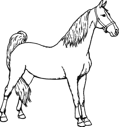 coloring pictures of a horse good horse coloring page wecoloringpage
