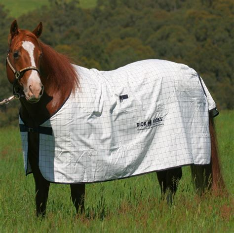 magnetic rug for horses magnetic rugs roselawnlutheran