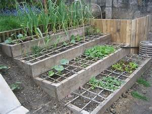 17 images about terrace vegetable garden on pinterest