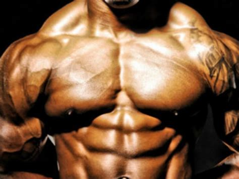 scheda di alimentazione per aumentare la massa muscolare allenamento per aumentare massa muscolare