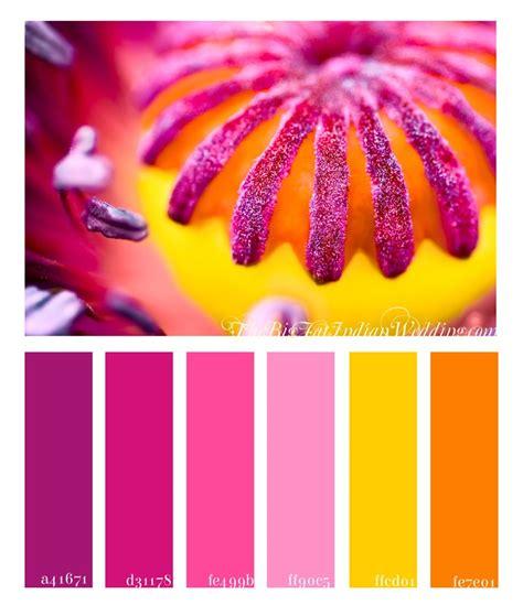 purple and orange color scheme poppy pink color palette monday