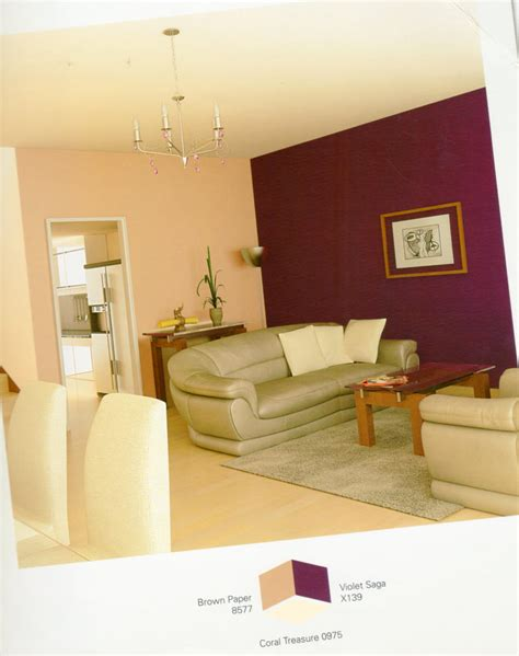 amusing asian colors for living room