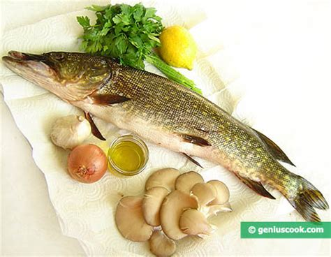 come cucinare il luccio di mare come preparare il luccio ripieno al forno alimentazione