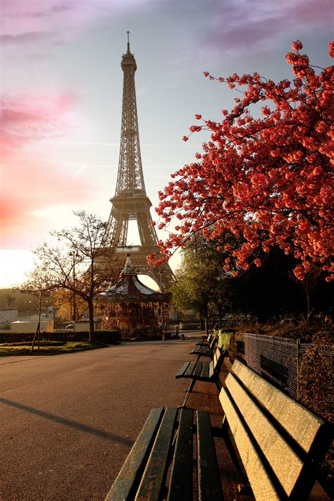 beautiful eiffel tower beautiful park on a background of the eiffel tower