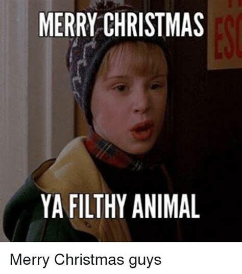 Merry Christmas You Filthy Animal Meme - 25 best memes about filthy animal filthy animal memes