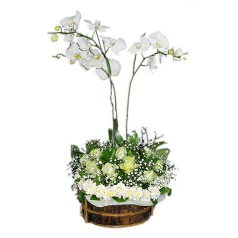 Anggrek Bulan Putih Blentong Merah rangkaian anggrek bulan murah harga 700 ribu toko bunga