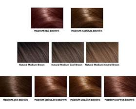 brown hair color chart shades of brown hair color pictures to pin on