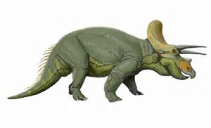 Dino Images Ceratops Pictures Facts The Dinosaur Database