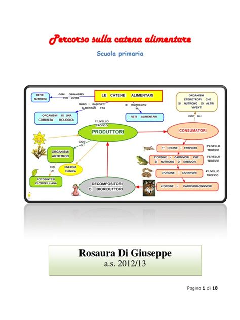 la catena alimentare scuola primaria la catena alimentare scuola primaria