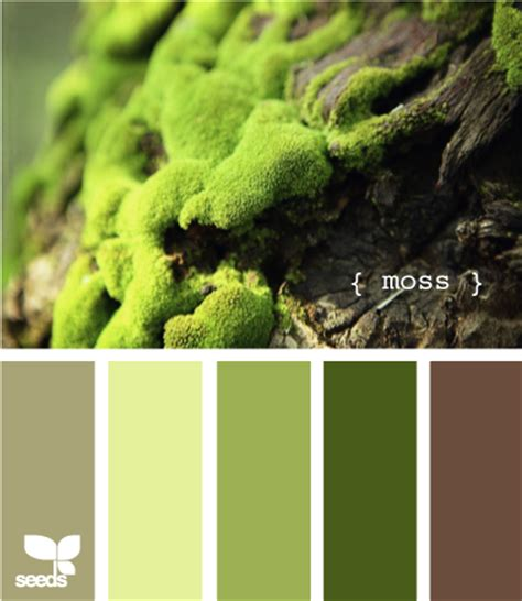 moss color color inspiration boards via design seeds at home with