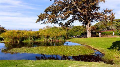 Kirstenbosch National Botanical Garden Cape Town Kirstenbosch National Botanical Gardens In Cape Town Expedia