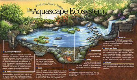 Aquascape Ecosystem pond myths jardins aquadesign