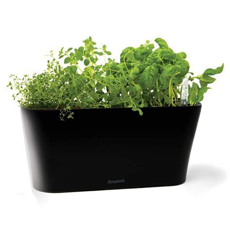 aquaphoric  watering herb garden tub planter black