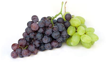 tipi di uva da tavola a settembre uva pugliese e sicialiana unicoop