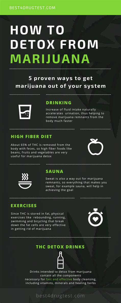 infographic 5 ways to detox from marijuana best 4 test