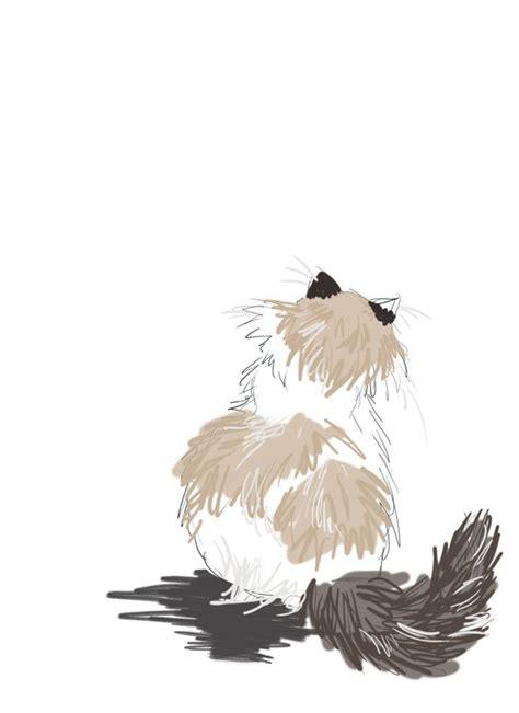 tattoo ragdoll cat ragdoll cat would make a great tattoo fuzzy love