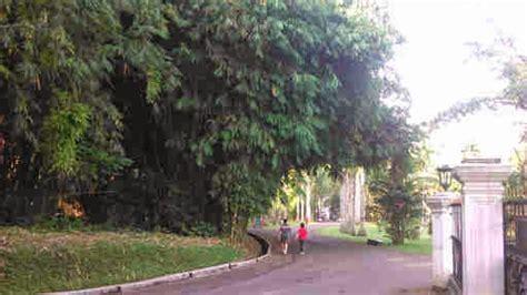 How Much Is Botanical Gardens Bogor Botanical Gardens How Much Is Oxygen Price Bogor