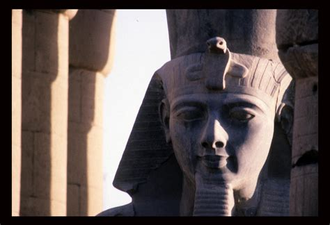 Longsleve Ramses a statue of ramses ii photograph by martin gray