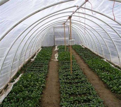 hoop houses pvc hoop house plans home floor plans