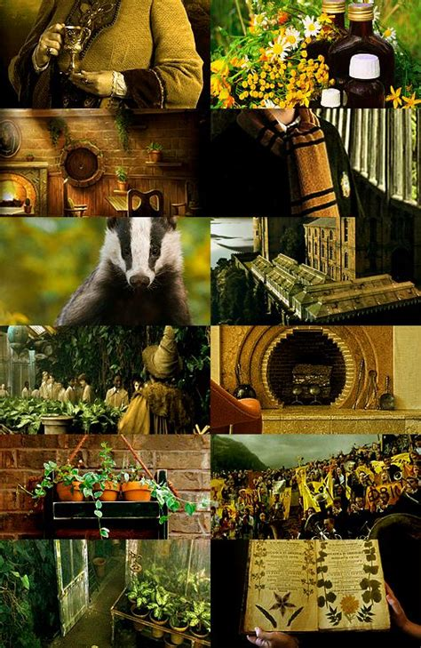 Harry Potter Curtains 17 best images about hufflepuff common room on pinterest