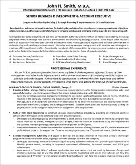 resume format for accounts executive pdf sle business development executive resume 8 exles in word pdf