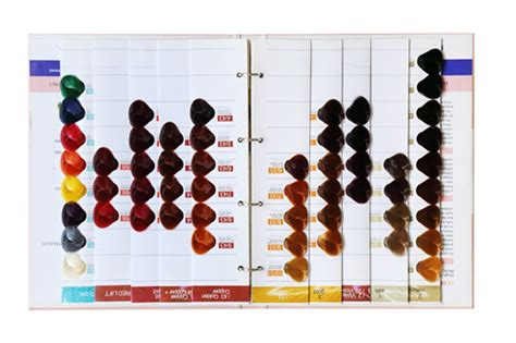 Hair Books For Salons by Hair Color Chart For Salon Hair Color Swatch Book Hair Dye
