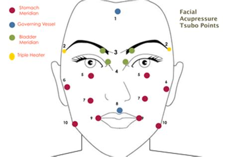 acupressure points for healthy skin facial acupressure page 4