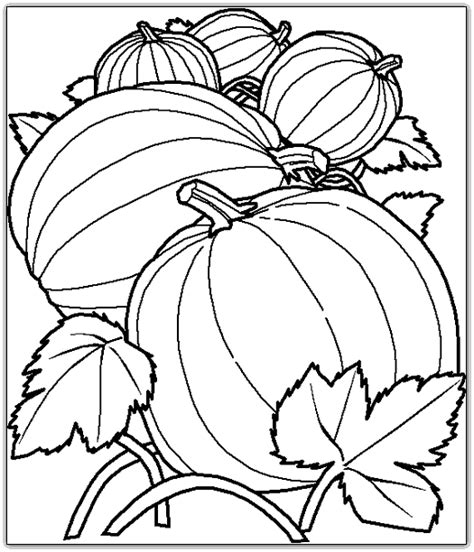 animations a 2 z coloring pages of fruits and vegetables