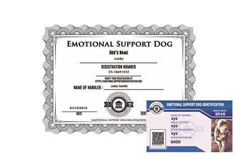 Emotional Support Dog Registration Basic Emotionalsupportdogregistration Org Emotional Support Animal Id Card Template