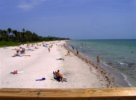 Learn About The Of Naples Florida Panoramio Photo Of Naples Florida