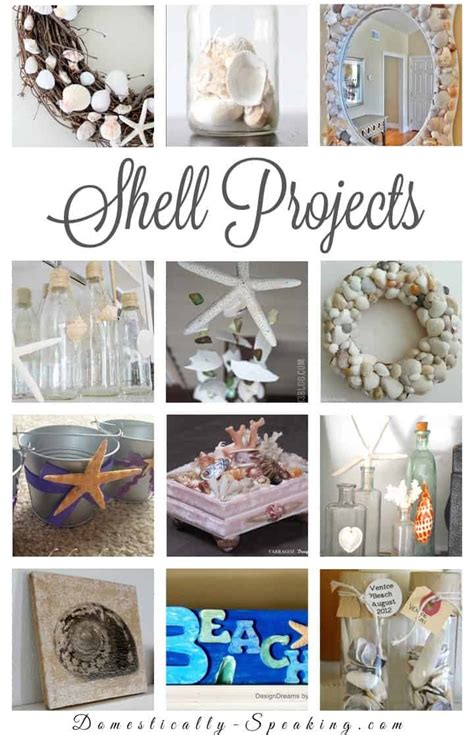 craft projects with shells shell projects diy seashell crafts