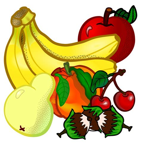 fruit clipart clipart fruits coloured