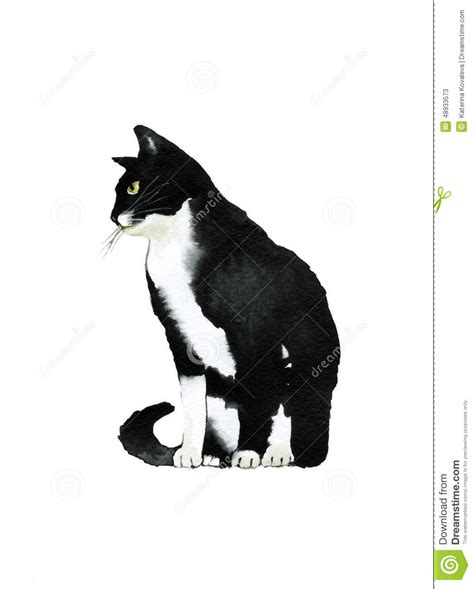 black and white water color cat from the side stock