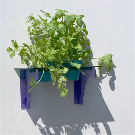 herb shelf herb shelf by flock follies notonthehighstreet com