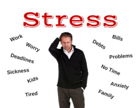 stressed out tribe conquer stress back to health chiropractic centre