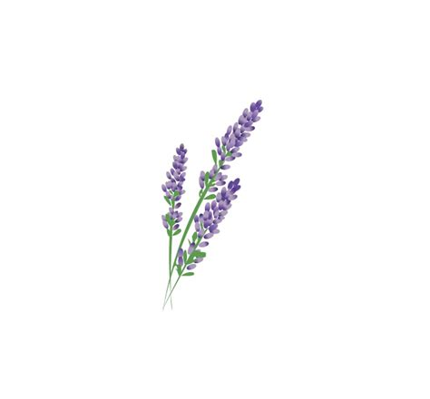 lavender flower tattoo designs popular purple flower designs buy cheap purple
