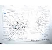 Thread Cabin Fuse Box Diagrams BA/BF VX/VY/VZ/VE