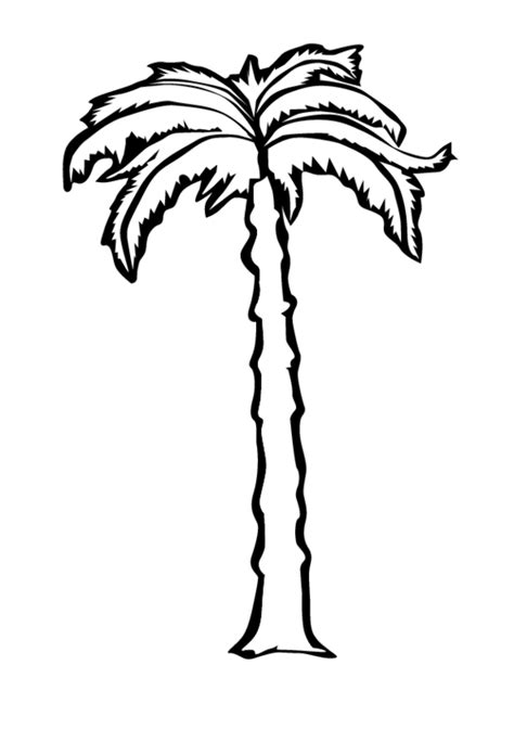 Palm Tree Free Coloring Pages Palm Tree Coloring Page