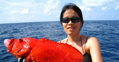 Kaos Fishing Frenzy 14 Cr Oceanseven my fishing frenzy similan islands the