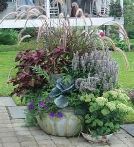 Plant Combination Ideas For Container Gardens Reilly S Container Planting Ideas Page Container Gardening Ideas Gardens