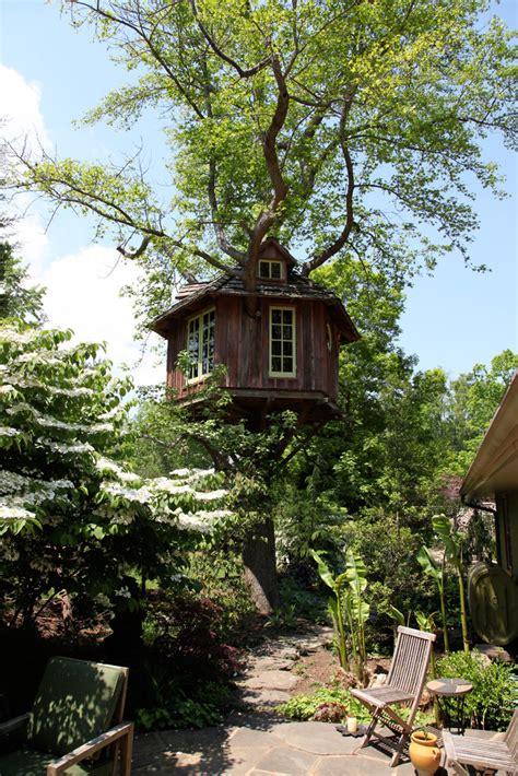 team tree house pete nelson s tree houses