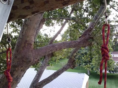 hanging swing from tree 19 best images about hanging swing on pinterest trees a